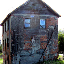 Once, a beauty by Janet Smothers - Buildings & Architecture Decaying & Abandoned