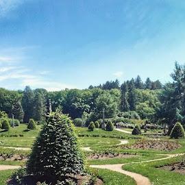 Konopište garden by Đurica Bešlić - Landscapes Travel