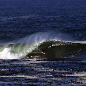 Morning Barrels by Bill Waterman - Sports & Fitness Surfing ( surfing, waves, ocean, sunrise, seascape,  )