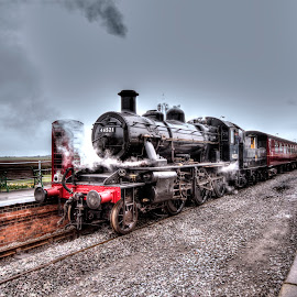 Golden Age of Steam by Simon O'Neill - Transportation Trains ( platform, station, locomotive, steam train, train, transportation, landscape, steam )