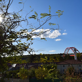 Sunny day :) by Nicoleta Nastasa - City,  Street & Park  Street Scenes