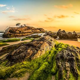 Cabeçudas Beach at Dawn by Rqserra Henrique - Landscapes Beaches ( water, brazil, dawn, rqserra, beach, sunrise, landscape, rocks )