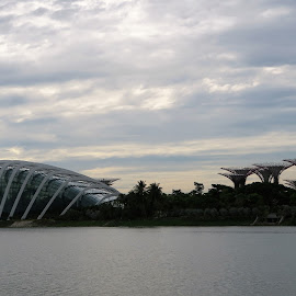 Singapore's Gardens by the Bay by Dennis Ng - Landscapes Travel