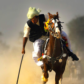 Janloos by Abdul Rehman - Sports & Fitness Other Sports ( horseback, thrill, adventure, speed, horse, dust, dangerous, rural,  )