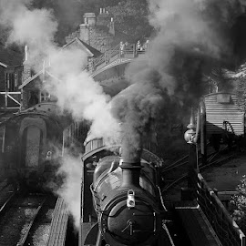 Smoke and Steam by Martin West - Transportation Trains