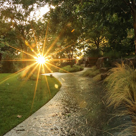 Botanical Gardens OKC by Kathy Suttles - City,  Street & Park  City Parks