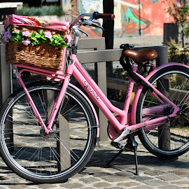 It's a woman's world by Paula NoGuerra - Transportation Bicycles ( street, pink, transportation, street photography, bicycle )