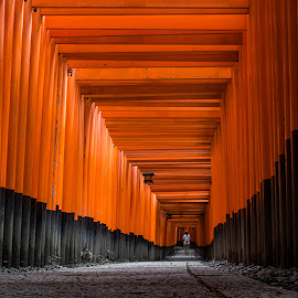 by Chris Patey - Buildings & Architecture Places of Worship ( japan, kyoto )
