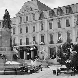 by Oana Burlacu - Buildings & Architecture Public & Historical