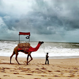 Lonely Traveller by Rohit Nagar - Landscapes Weather ( sands, clouds, seashore, traveller, beach )