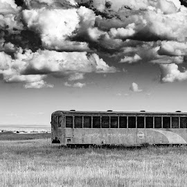 Eastonville by Chris Kaiser - Black & White Objects & Still Life ( field, clouds, eastonville, train car, colorado, train, decay, abandoned )