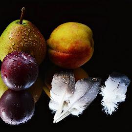 still life by Prasanta Das - Food & Drink Fruits & Vegetables ( still life, fruits, feathers )
