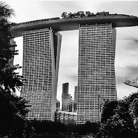 Singapore  by Melody Ann Fernandez - Buildings & Architecture Office Buildings & Hotels