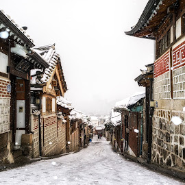 snow over bukchon by Aaron Choi - Buildings & Architecture Public & Historical ( down hill, footpath, street, snow storm, architectural details, road, house, architecture, hilly, travel, historic, city, asian, bukchon, village, iconic, snow, asia, path, homes, korea, snow covered, icon, pathway, hanok, traditional, tourism, snowing, destination, korean, urban, landmark, winter, seoul, scene, historical, hallway, scenery, town, view )