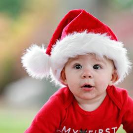 Alex by Tony Bendele - Babies & Children Child Portraits ( child, color, people portrait, happy, christmas, children, santa hat, fun, cute, hat )