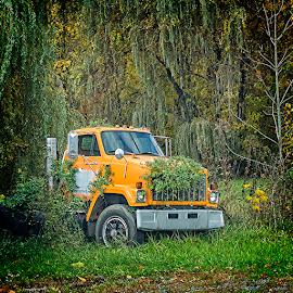 orange truck by Lennie Locken - Transportation Automobiles