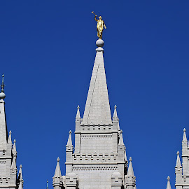 Top of the Temple by Tony Huffaker - Buildings & Architecture Places of Worship ( building, utah, spires, highest, salt lake temple )