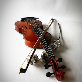 taste of music by Abing Ardian - Novices Only Objects & Still Life ( orchid, violin, paper )