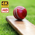 Cricket Wallpapers HD+4K APK for Bluestacks