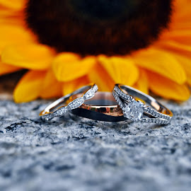 Sunflower Rings by Kate Melody - Wedding Details ( beautiful, silver, sunflower, stone, yellow, love, gorgeous, wedding, diamond, rings, gold, bride, groom, black )