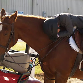 Even Champions Sleep! by Shari Roberts Mangham - Sports & Fitness Other Sports ( sleep#champions#horse#rider=long day )