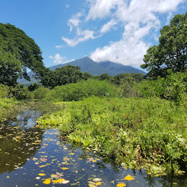 Peaceful paddling by Holly Hatcher - Landscapes Travel ( #kayakingadventures, #ometepe, #middleofnowhere, #junglelove, #volcano )