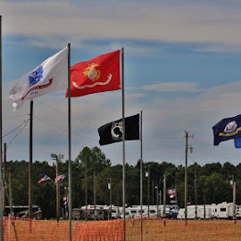 Flags by Terry Linton - City,  Street & Park  Street Scenes