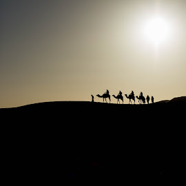 by _ Aronax _ - Landscapes Deserts ( ride, orange, sand, dunes, warm, arab, truck, street, christmas, dromedaryoffroad, kings, road, morning, morocco, magi, middle, egypt, shadows, berbervacation, three, east, men, africa, animalbedouin )