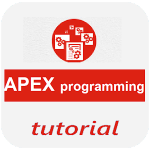 Learn Apex Programming