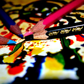 Color pencils by Sushant Ojha - Artistic Objects Other Objects (  )