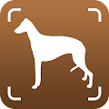 Dog Breed identifier, Scanner by Photo Camera 2019 APK