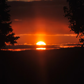 natures frame by Erin Meisner - Landscapes Sunsets & Sunrises ( sunset through branches, landscape, orange sun, evening )