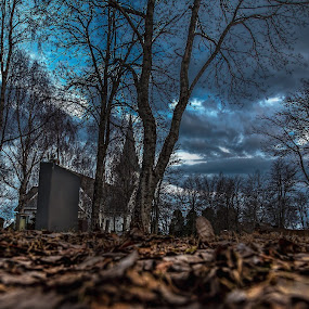 Graveyard by Benny Høynes - City,  Street & Park  Cemeteries ( leafs, canon eos, church, norway, gravestone, cemetery )
