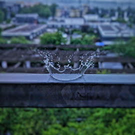 The crown of nature!! by Kunwar Aditya - Abstract Water Drops & Splashes ( mobilography, nature, still life, mobile photos, waterdrops )