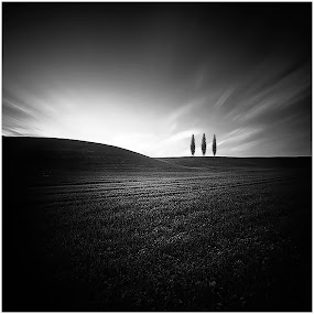 From the Series: Horizon by Fernand De Canne - Landscapes Prairies, Meadows & Fields