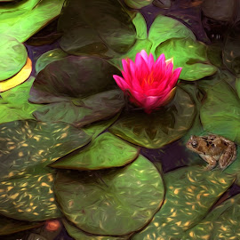 Lily Pond by Mill Tal - Digital Art Things