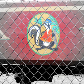 Skunk Train by Becky Luschei - Transportation Trains ( passenger car, logo, color, black and white, chain link fence, skunk train )