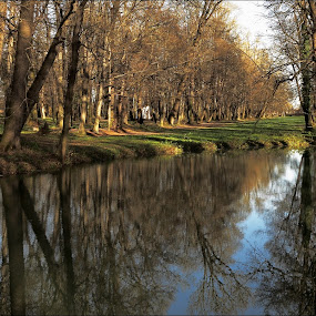 by Ludvík Sukup - City,  Street & Park  City Parks