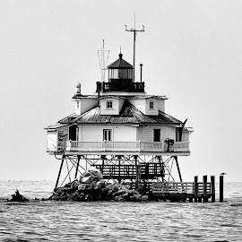 Thomas Point Lighthouse by Michael Lopes - Landscapes Waterscapes ( historic lighthouse, annapolis, waterscape, thomas point lighthouse, chesapeake bay )