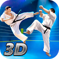 Karate Fighting Tiger 3D - 2 APK for Bluestacks
