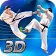Karate Fighting Tiger 3D