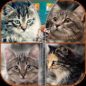App Kitties Zipper Lock apk for kindle fire