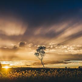 by Beth Fernley - Landscapes Sunsets & Sunrises