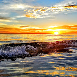 Sunset swim in the gulf by Jeffrey Lee - Landscapes Sunsets & Sunrises ( sunset swim in the gulf )