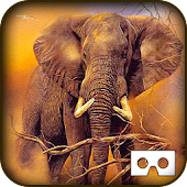 Download Wild Jungle Tour VR - Animals APK to PC