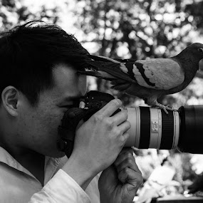 Photographer and Assistant by VAM Photography - Black & White Street & Candid ( pigeon, assistant, b&w, photographer, candid, nyc, street photography )