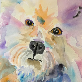 Jake by Jeanne Knoch - Painting All Painting