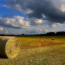 by Alain Labbe Alain - Landscapes Prairies, Meadows & Fields
