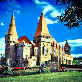Castle Huniazilor by Mihai Sirb - Buildings & Architecture Public & Historical ( history, arhitecture, corvin, castle, romania )