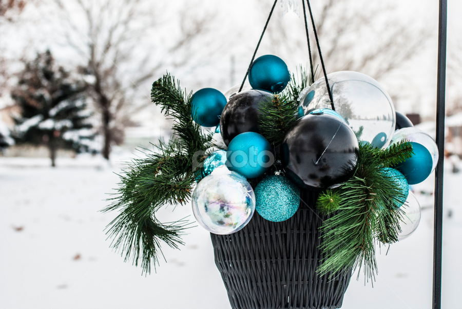 Globes in a basket by Kyley Hansen - Public Holidays Christmas ( winter, pine tree, snow, christmas, globe )
